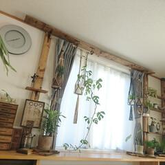 ディアウォール/賃貸/観葉植物/プラントハンガー/賃貸DIY/DIY 1.改善したかった点 備え付けのストーブ…