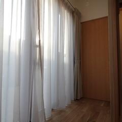 物干し/室内干し 掃き出し窓を開ければ、バルコニーまで広が…