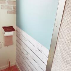 西海岸にしたい/pooh/テコラッタクッションフロア/セリアリメイクシート/ダイソーリメイクシート/トイレ/... やっぱりトイレの壁紙変えた(・∀・) セ…