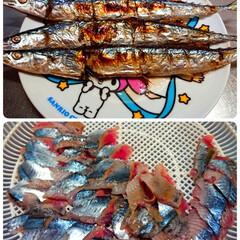 漁協より/箱買い/秋刀魚/初物/おうちごはん 9月27日の晩御飯🍚  初物の秋刀魚を頂…