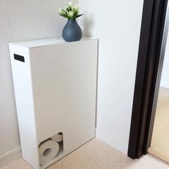 トイレ/インテリア/Plate/トイレットペーパーストッカー/山崎実業/収納/... トイレットペーパーを隠したくて「Plat…