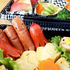 お弁当/弁当/ソーセージ/ソーセー人/キャラ弁/みんなのお弁当 いつかのみんなでピクニックに出かけた時の…