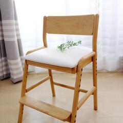 ISSEIKI/一生紀/フィオーレ/FIORE/学習チェア/椅子/... 一生紀さんのフィオーレ(FIORE)とい…