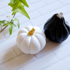 ハロウィン/ハロウィン雑貨/モノトーン/モノトーン雑貨/白黒/白黒雑貨/... セリアで買った、白黒の可愛いカボチャたち…