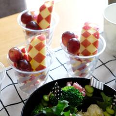 運動会/お弁当/弁当/デザート/フルーツ/リンゴ/... 運動会お弁当のデザートのフルーツ。  カ…