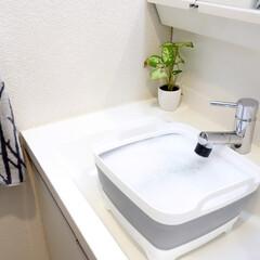 洗い桶/モノトーン/オキシクリーン/オキシ漬け/洗面所/洗濯/... オキシ漬け用に買った、折りたたみできる洗…