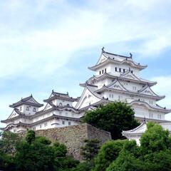 姫路城/白鷲城/城/お城/旅/兵庫/... 今年の5月に行った姫路城。  通っぽいお…