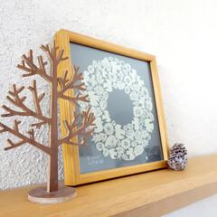 ウッドツリー/ウォルナット/インテリア/冬/雑貨/リビング/... ウォルナットで出来たウッドツリー。 枝の…