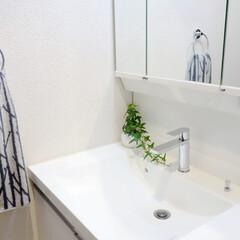 洗面所/洗面台/TOTO/水栓/DIY/おうち自慢 水漏れがあり、紆余曲折あって新しくなった…