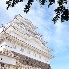 姫路城/白鷲城/兵庫/旅/お城/城/... ずっと行ってみたかった姫路城。  別名「…
