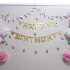 誕生日/100円ショップ/100均/飾り付け/デコ/ハニカムボール/... 娘の3歳の誕生日の飾り付け。  当時は1…