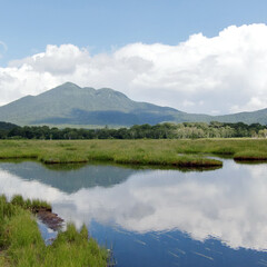尾瀬/湿原/旅/ハイキング/群馬/福島/... 数年前の夏、尾瀬に行った時の1枚。 雄大…