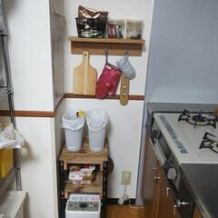賃貸キッチン/キッチン収納