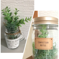 トイレ/グリーン/雑貨/セリア/インテリア 空き瓶にセリアで買ったフェイクグリーンを…