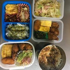 日常/お弁当/フード 日課。 特別でもなく当たり前のお弁当。 …