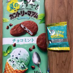 チョコミント/おやつ スーパーで見つけたので、 もちろん買いま…