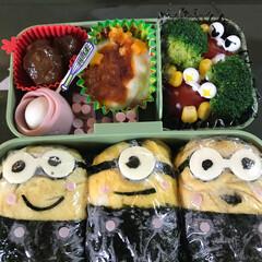 お弁当/おでかけ/フード/グルメ 小学校の校外学習。  お弁当はミニオンね…