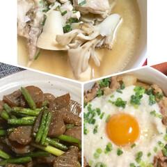 コンニャクとニンニクの芽の甘辛炒め/タケノコ中華風スープ/豚味噌とろろ丼/ハンドメイド/フード/おうちご飯 皆さんのレシピに  助かっています😊  …