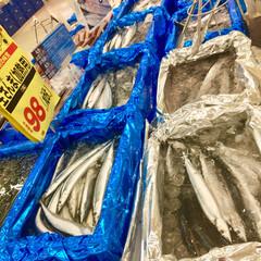 フード/お家ご飯/秋刀魚 今年は サンマが  豊漁だそうですね(^…(2枚目)