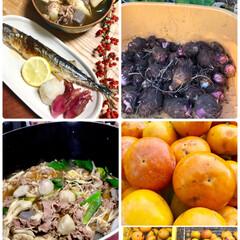 秋/山形の芋煮/里芋堀り/キノコ/柿/お家ご飯/... 私も 山形の芋煮を作ってみましたヽ(´▽…