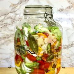 ピクルス/自家製野菜/フード/グルメ ゴーヤ入りの ピクルス 作りました😃 ゴ…