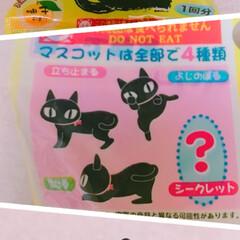 入浴剤/ダイソー 今日のお風呂は、DAISOで買ったクロネ…