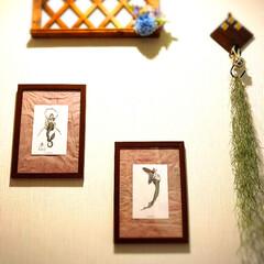 エアープランツ/造花/DIY/雑貨/100均/ダイソー/... 我が家の玄関正面です。 大好きな大城清田…(1枚目)