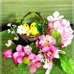 春/フェイクグリーン/雑貨/100均/ダイソー/インテリア 3月になって、暖かくなってきたので、お雛…