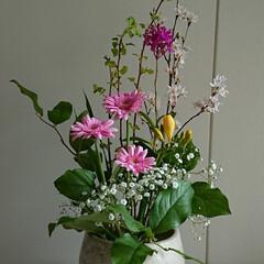 水盤/インテリア/アレンジ/フラワー/花/お花/... 2階 待合室の生け花です  ちょっとスカ…