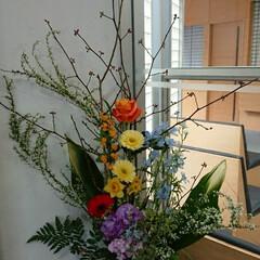 インテリア/お花/水盤/花/フラワーアレンジ/フラワー/... 1階 正面玄関の生け花です  黒文字と桃…
