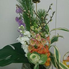 スイトピー/老梅/水盤/金魚草/ストック/待合室/... 2階の待合室の生け花です  ストックと金…