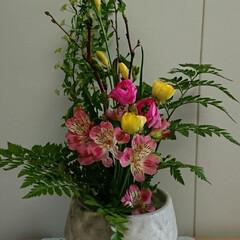 アネモネ/インテリア/待合室/病院/フラワー/花/... 2階 待合室の生け花です  小さい水盤で…