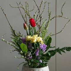 フラワー/インテリア/水盤/活け花/いけばな/生花/... 2階 待合室の生け花です  チューリップ…