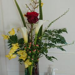インテリア/待合室/病院/花瓶/花瓶(フラワーベース)/花/... 3階 待合室の生け花です  細長い花瓶に…