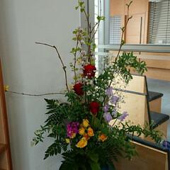 水盤/インテリア/アレンジ/フラワー/花/お花/... 1階 正面玄関の生け花です  花の種類が…