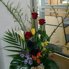 フラワー/活け花/インテリアフラワー/病院/正面玄関/水盤/... 1階 正面玄関の生け花です  お正月ムー…