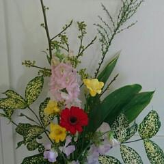 待合室/病院/フラワーベース/フラワー/お花/生花/... 3階 待合室の生け花です  枝物の青文字…