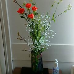 最後/インテリア/アレンジ/フラワー/花/お花/... 3階 待合室の生け花です  なんと病院縮…
