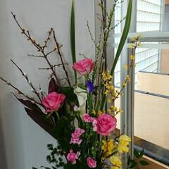 インテリア/花/水盤/フラワー/お花/正面玄関/... 1階 正面玄関の生け花です  老梅と猫柳…