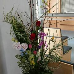 水盤/フラワー/インテリア/活け花/いけばな/生花/... 1階 正面玄関の生け花です  黒芽柳と雪…