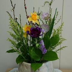 インテリア/フラワーアレンジ/水盤/花/お花/フラワー/... 2階 待合室の生け花です  アネモネと水…
