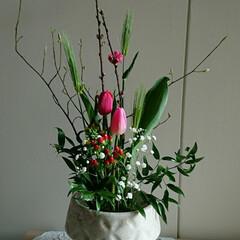 水盤/インテリア/アレンジ/フラワー/花/お花/... 2階 待合室の生け花です  いつも苦戦す…