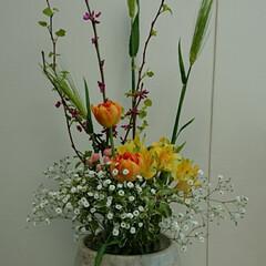 水盤/インテリア/アレンジ/フラワー/花/お花/... 2階 待合室の生け花です  かすみ草の生…