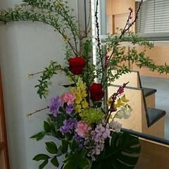 アレンジ/フラワー/花/インテリア/水盤/活け花/... 1階 正面玄関の生け花です  春の花集め…