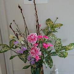 インテリア/フラワーアレンジ/フラワー/花/お花/生花/... 3階 待合室の生け花です  カーネーショ…