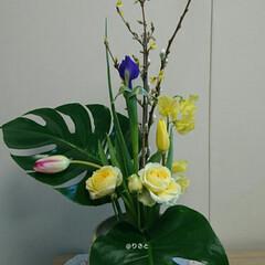 待合室/病院/インテリア/フラワー/お花/水盤/... 2階 待合室の生け花です  チューリップ…