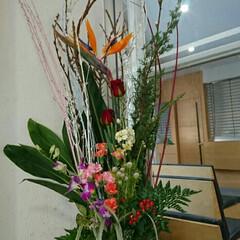 水盤/出入り口/受付/病院/インテリア/お花/... 月に4回ほど産婦人科病院の生け花をしてい…