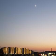 空/夕焼け大好き/夕焼け/綺麗/三日月/月/... 三日月☽・:* すんごい綺麗でした。明日…