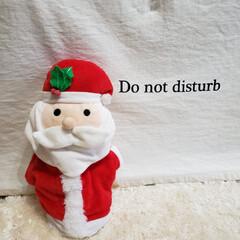 プレゼント/クリスマス/犬と暮らす/犬小屋/ペット/ペット用品/... 🎅🏻さん。 ガゥガゥボルトのところにもき…