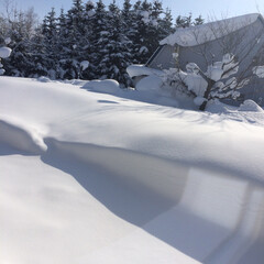 北海道/しばれた/雪はね/綺麗な空/大雪 隣のうちの見えないほどの大雪☃️☃️☃️…